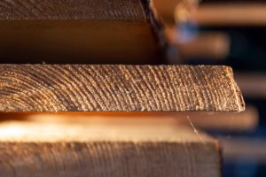 Timber Stock plays a roll in analyze today's market