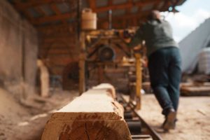 lumber industry worker while lumber prices soar