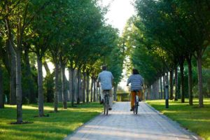 retired-couple riding bikes in the park